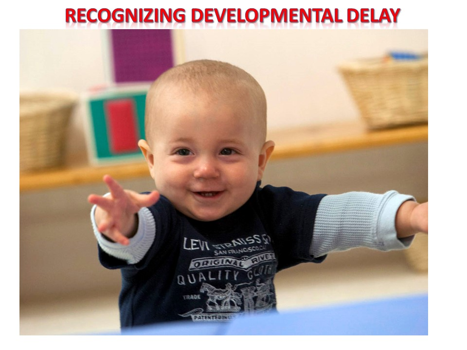 Recognizing developmental delay in children